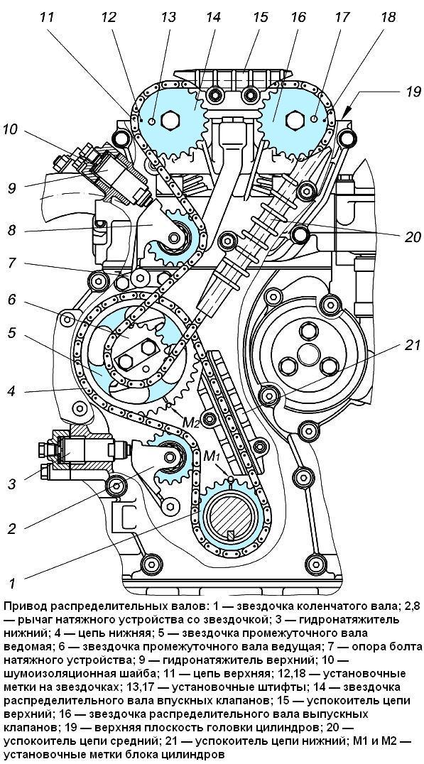 поговорим десяти двигатель 405 замена цепей грм также: