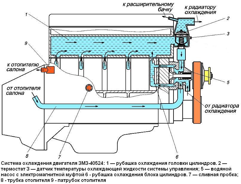 Система охлаждения ЗМЗ-40524