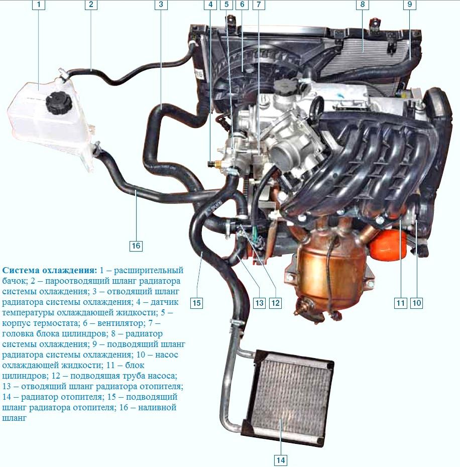 Схема охлаждения двигателя калина фото 189